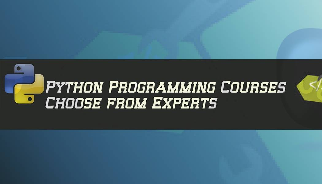 Python Programming Courses Delhi: Choose from Experts