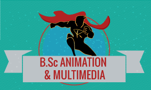 BSC in Animation and Multimedia in Delhi
