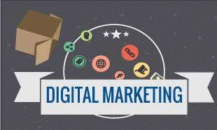 Digital Marketing Diploma courses in Delhi