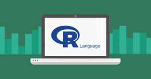 r-programming-language-course -in-delhi